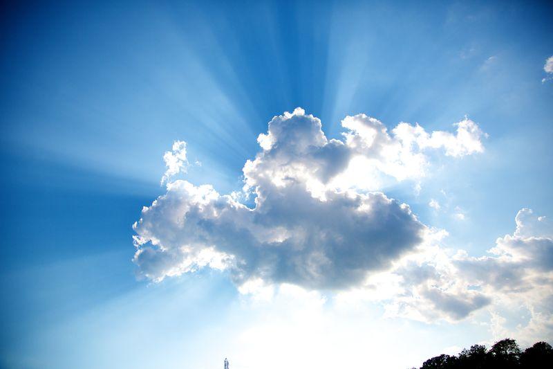 Summer 20120703 9874