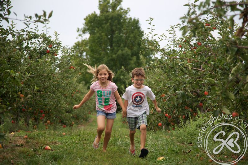 Apple picking 09012012 14498