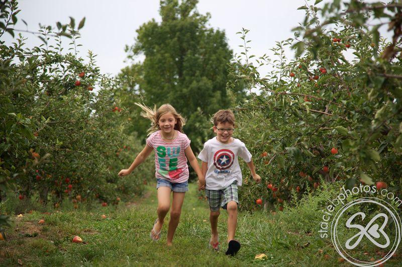Apple picking 09012012 14498
