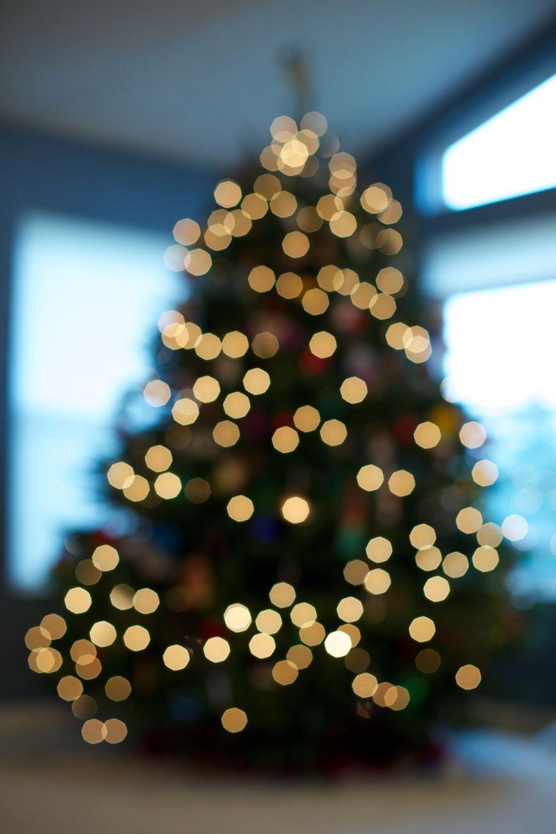 Christmas time 2012 18606
